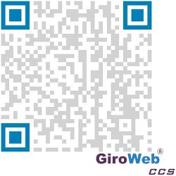 GiroWeb Definition & Erklärung: Automatenleser & Automatensteuerung (VMC) | QR-Code FAQ-URL