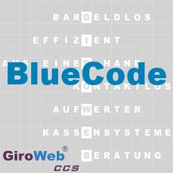 GiroWeb FAQ für Gemeinschaftsverpflegung (GV) & Catering: Was ist Blue-Code?